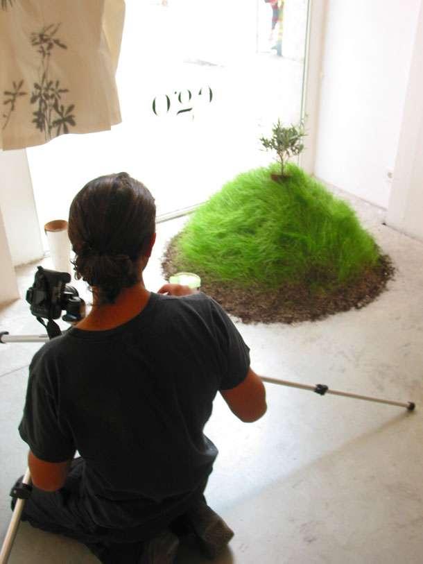 04urnabios - Urna Bios conviértete en un árbol después de morir